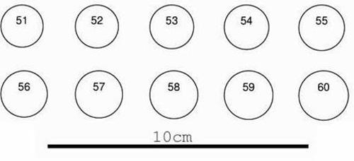 Calculer la taille d'une bague